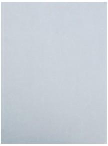 Papel pintado Antares 594-05